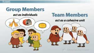 Work groups and teams in organizations pdf